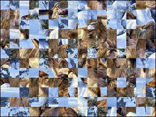 Weißrussisch Puzzle №119062