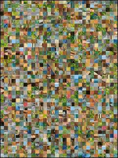 Weißrussisch Puzzle №15276
