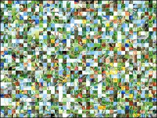 Weißrussisch Puzzle №156014