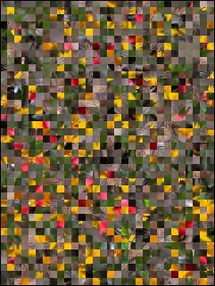 Weißrussisch Puzzle №16687