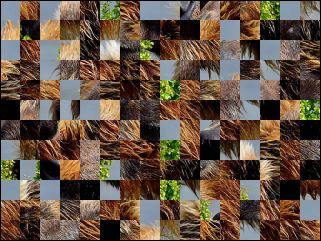 Weißrussisch Puzzle №170372