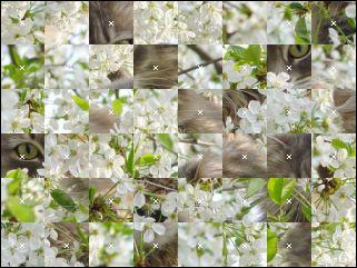Weißrussisch Puzzle №17265