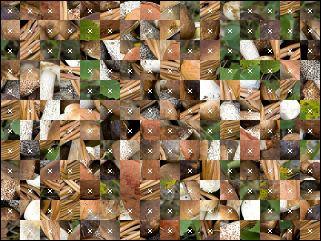 Weißrussisch Puzzle №188685
