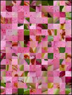 Weißrussisch Puzzle №20059