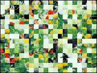 Weißrussisch Puzzle №33245