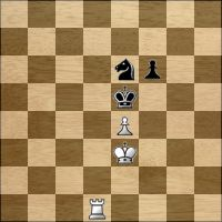 Schach-Aufgabe №128137