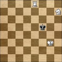Schach-Aufgabe №177889