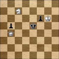 Schach-Aufgabe №266088