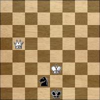 Schach-Aufgabe №295978