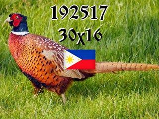Filipino Puzzle №192517