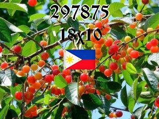 Filipino Puzzle №297875