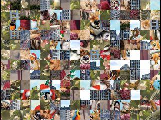Multi-Puzzle №157620