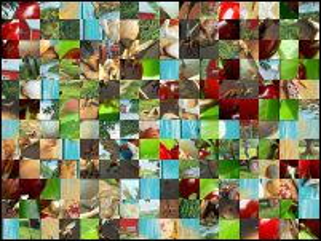 Multi-Puzzle №204559