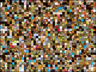 Multi-Puzzle №28732