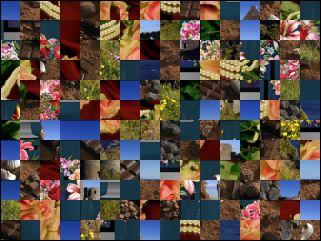 Multi-Puzzle №28830