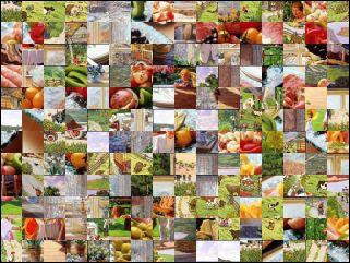 Multi-Puzzle №29407