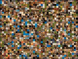 Multi-Puzzle №36962