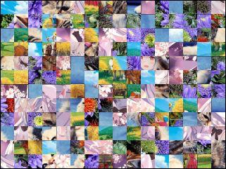 Multi-Puzzle №62931