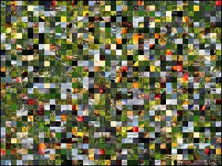 Multi-Puzzle №63488