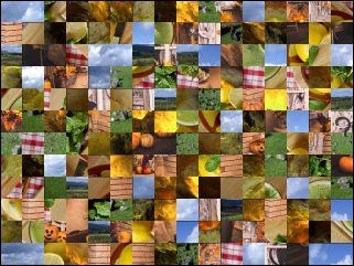 Multi-Puzzle №65263