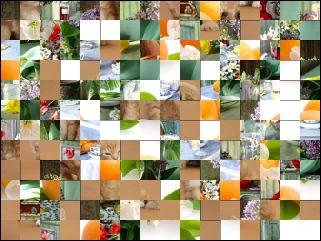 Multi-Puzzle №76923
