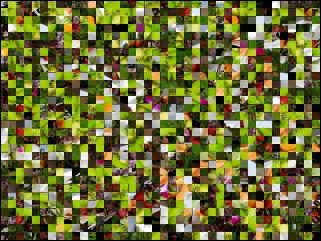 Multi-Puzzle №90709