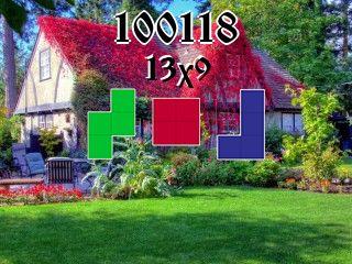 Puzzle полимино №100118