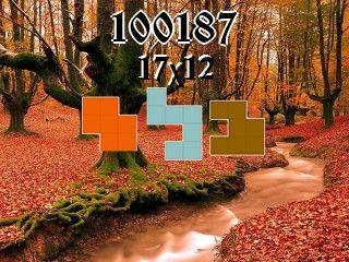 Puzzle полимино №100187