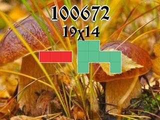 Puzzle полимино №100672