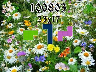 Puzzle полимино №100803