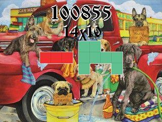 Puzzle полимино №100855