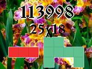 Puzzle полимино №113998