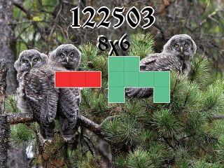 Puzzle полимино №122503