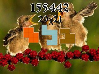 Puzzle полимино №155442