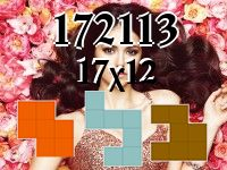 Puzzle полимино №172113