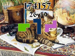 Puzzle полимино №174157