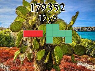 Puzzle полимино №179352