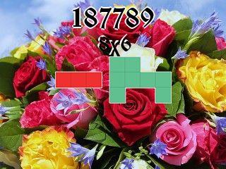Puzzle полимино №187789