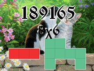 Puzzle полимино №189165