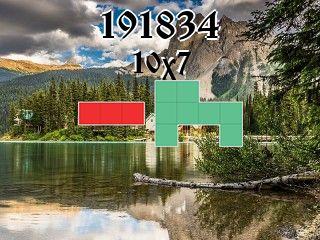 Puzzle полимино №191834