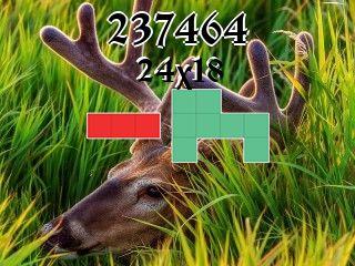 Puzzle полимино №237464