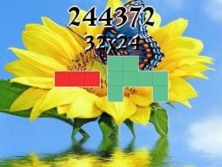Puzzle полимино №244372