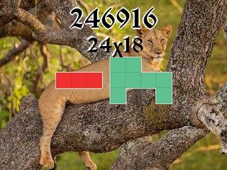 Puzzle полимино №246916