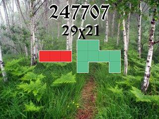 Puzzle полимино №247707