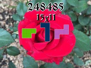 Puzzle полимино №248485