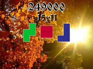 Puzzle полимино №249000