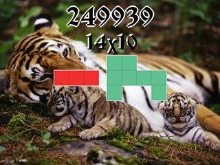 Puzzle полимино №249939