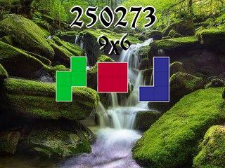 Puzzle полимино №250273