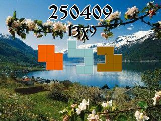 Puzzle полимино №250409