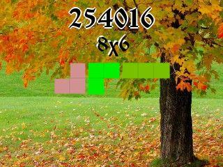 Puzzle полимино №254016